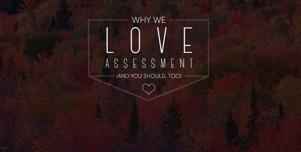 Why We Love Assessment (And You Should, Too!)