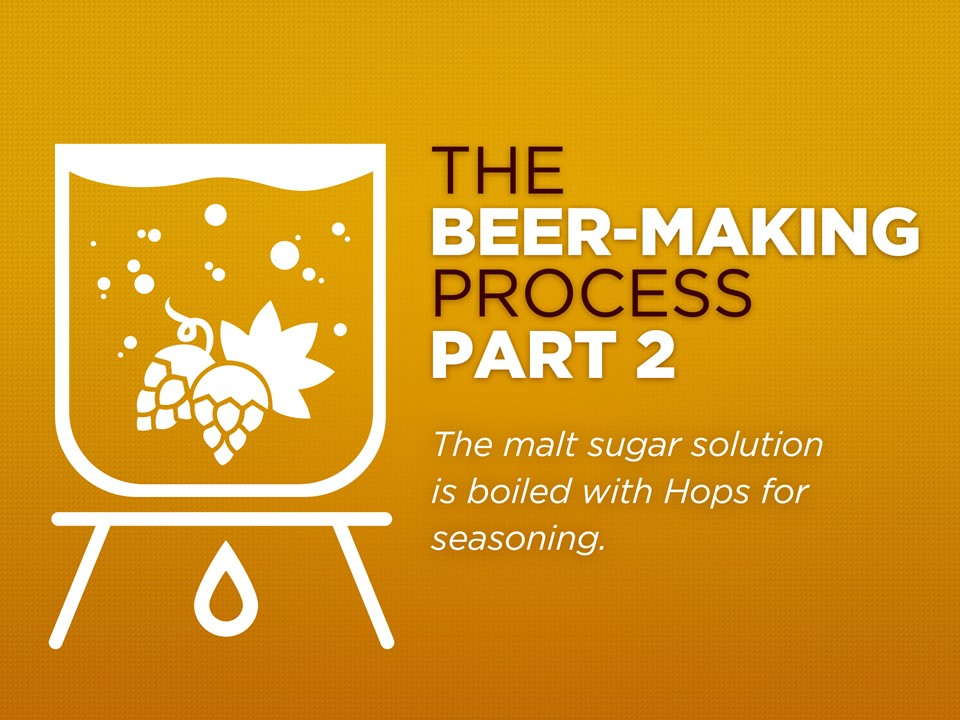 an analysis of the topic of the brewing process How to essays: process analysis  the basic brewing process has five steps the first step is mashing cereal grains, usually barley and hops, are mixed with.